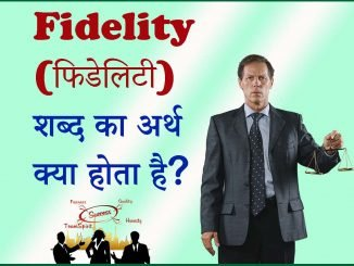 Fidelity meaning
